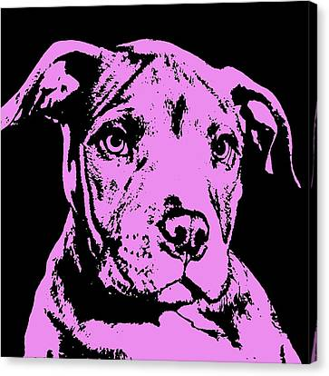 Purple Little Pittie Canvas Print by Dean Russo