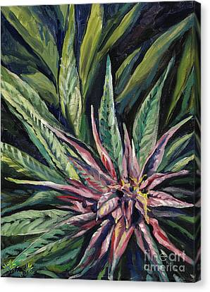 Purple Power Canvas Print by Mary Jane