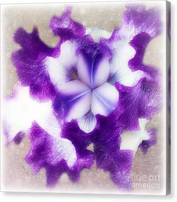 Purple Splash Canvas Print by Anita Faye