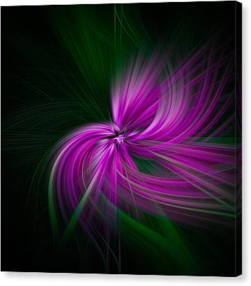 Purple Twirls Canvas Print by Noah Katz