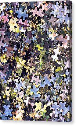 Puzzle Piece Abstract Canvas Print by Steve Ohlsen