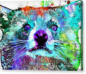 Raccoon Grunge Canvas Print by Daniel Janda