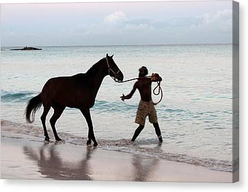 Race Horse And Groom 1 Canvas Print by Barbara Marcus