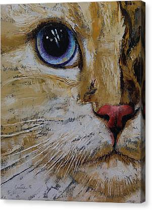 Ragamuffin Canvas Print by Michael Creese