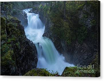 Raging Canyon Canvas Print by Carrie Cole