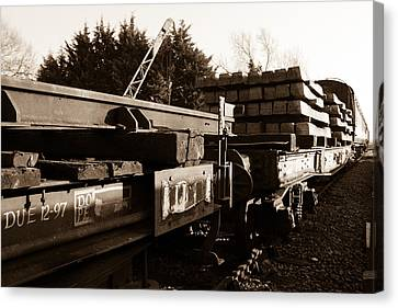Railway Wagons Canvas Print by Steven Sexton