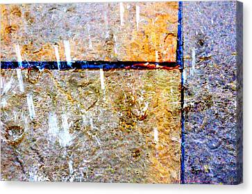 Rain 6876 Canvas Print by PhotohogDesigns
