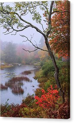 Rain Canvas Print by Chad Dutson