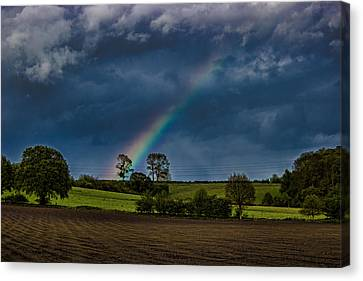 Rainbow Fields Canvas Print by Martin Newman