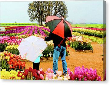 Rainy Day At The Tulip Farm Canvas Print by Margaret Hood