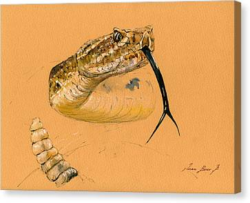 Rattlesnake Painting Canvas Print by Juan  Bosco