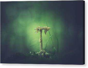 Ravaged Shroom In The Land Of Small Canvas Print by Shane Holsclaw