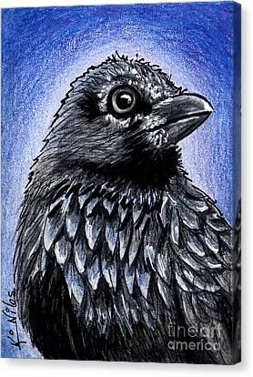 Raven Canvas Print by Kim Niles