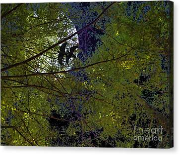 Ravens Of The Harvest Moon Canvas Print by Wingsdomain Art and Photography