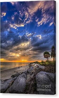 Raw Beauty Canvas Print by Marvin Spates