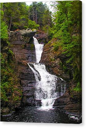 Raymondskill Falls Canvas Print by Bill Cannon