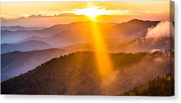 Rays If Gold Canvas Print by Shelby Young