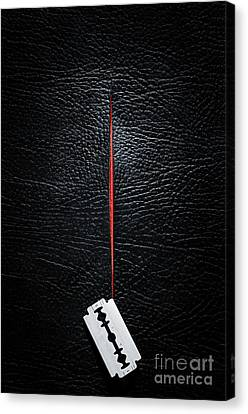 Razor Cut Canvas Print by Carlos Caetano