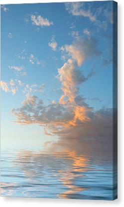 Reaching High Canvas Print by Jerry McElroy