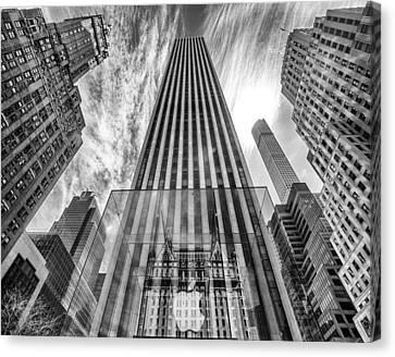 Really Big Apple Canvas Print by John Dryzga
