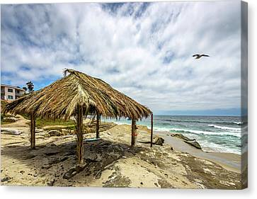 Rebirth  At Windandsea Canvas Print by Peter Tellone