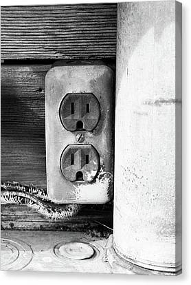 Receptacle Canvas Print by Tom Druin