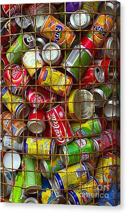 Recycling Cans Canvas Print by Carlos Caetano