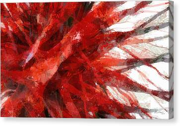 Red Abstract Canvas Print by Russ Harris
