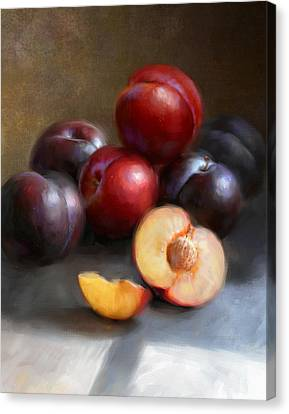 Red And Black Plums Canvas Print by Robert Papp