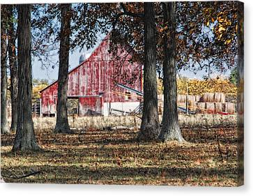 Red Barn Through The Trees Canvas Print by Pamela Baker