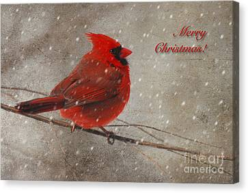 Red Bird In Snow Christmas Card Canvas Print by Lois Bryan