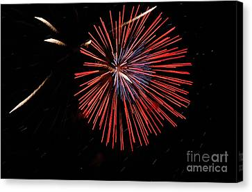 Red Burst Canvas Print by Norman  Andrus