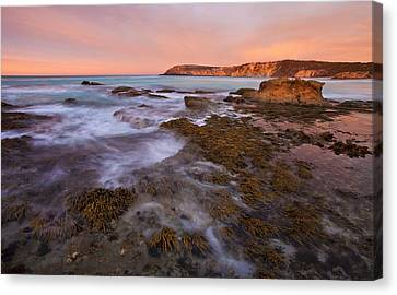 Red Dawning Canvas Print by Mike  Dawson