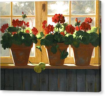 Red Geraniums Basking Canvas Print by Linda Jacobus