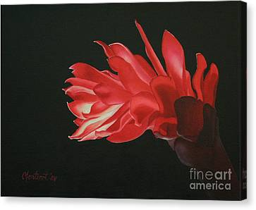 Red Ginger Canvas Print by Christine Fontenot