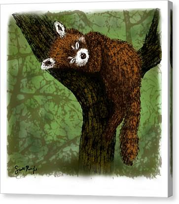 Red Panda Napping Canvas Print by Scott Rolfe