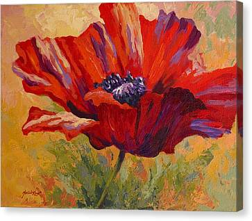 Red Poppy II Canvas Print by Marion Rose
