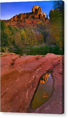 Red Rock Reflection Canvas Print by Mike  Dawson