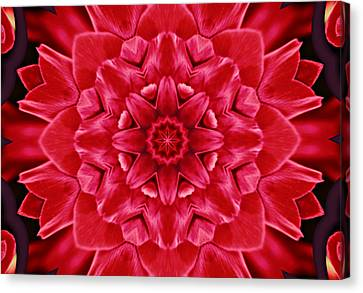 Red Rose Kaleidoscope Canvas Print by Cathie Tyler