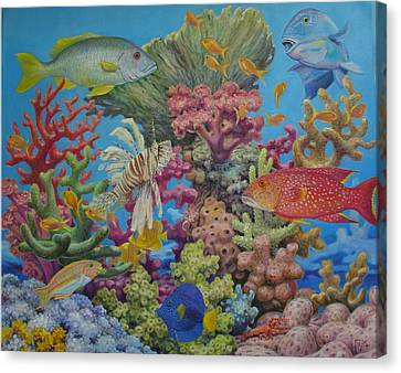 Red Sea Reef Canvas Print by Henry David Potwin