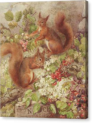 Red Squirrels Gathering Fruits And Nuts Canvas Print by Rosa Jameson
