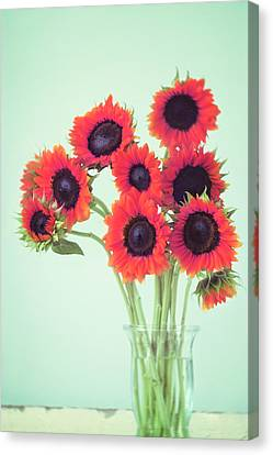 Red Sunflowers Canvas Print by Amy Tyler