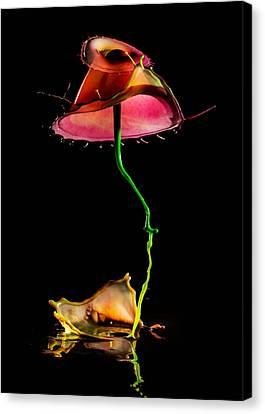 Red Umbrella Canvas Print by Jaroslaw Blaminsky