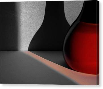 Red Vase Canvas Print by Tom Druin