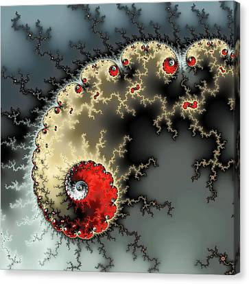 Red Yellow Grey And Black - Amazing Mandelbrot Fractal Canvas Print by Matthias Hauser