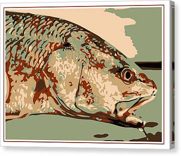 Redfish Camo Canvas Print by David Danforth