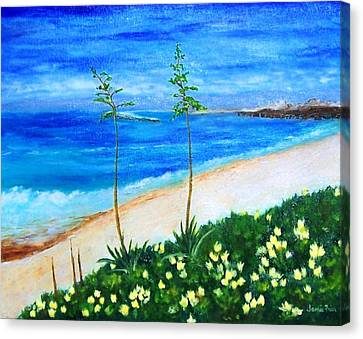 Redondo Beach Canvas Print by Jamie Frier
