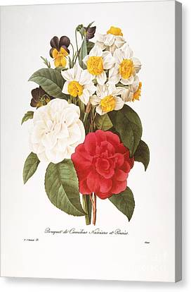 Redoute: Bouquet, 1833 Canvas Print by Granger