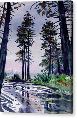 Redwood Reflections   Canvas Print by Donald Maier