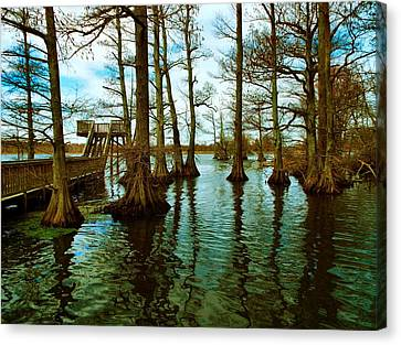 Reelfoot Beauty Canvas Print by Julie Dant